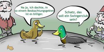 1611_vogelgrippe_blanko